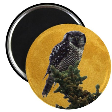 "Owl and Moon 2.25"" Magnet (10 pack)"