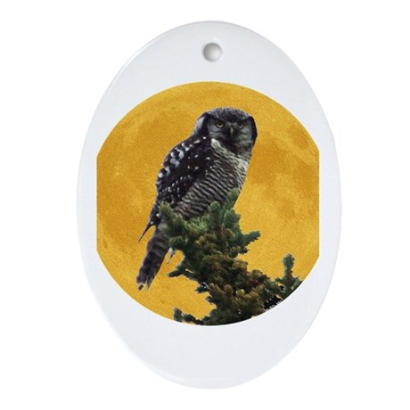 Owl and Moon Oval Ornament
