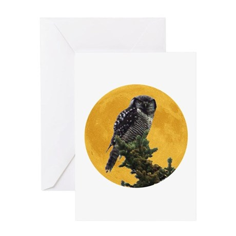 Owl and Moon Greeting Card