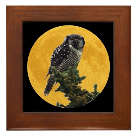 Owl and Moon Framed Tile
