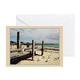 Seagulls At Fremantle Greeting Cards (Pk of 10)