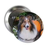 Thanksgiving Sheltie Button