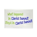 What Happens In Clarks Summit Rectangle Magnet (10