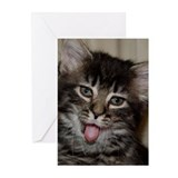 Kitten Bleh! Greeting Cards (Pk of 10)