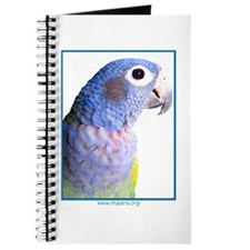 Blue-Headed Pionus - Journal