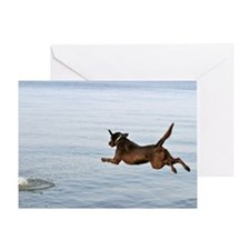 Chocolate Lab Remi Greeting Card