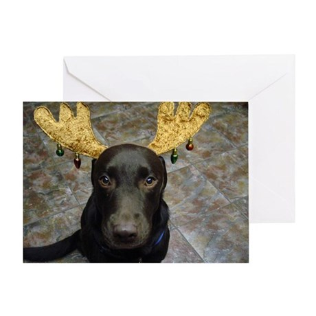 Chocolate Lab Chip Greeting Card