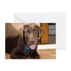 Happy Chocolate Lab Greeting Cards (Pk of 20)