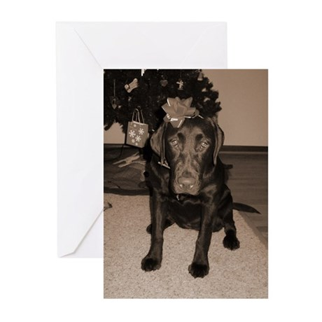 Gift Wrapped Lab Greeting Cards (Pk of 20)