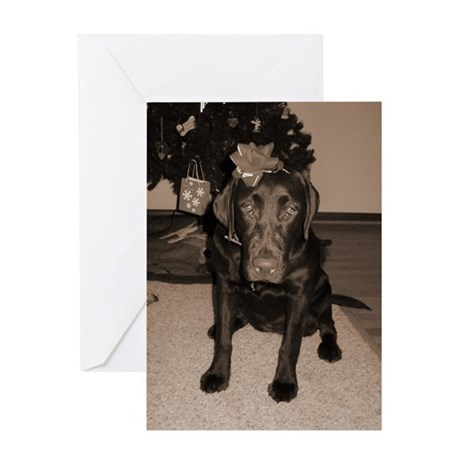 Gift Wrapped Lab Greeting Card