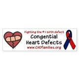 CHD Families Bumper Car Sticker