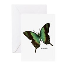 Green Butterfly Greeting Cards (Pk of 10)