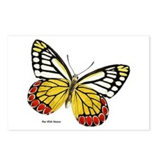 Red Dots Butterfly Postcards (Package of 8)