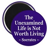 The Unexamined Life (Socrates Magnet)