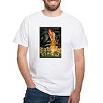Mid Eve/Border T White T-Shirt