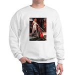 Accolade / Rottweiler Sweatshirt