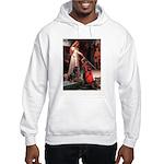 Accolade / Rottweiler Hooded Sweatshirt