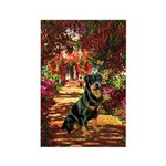 The Path / Rottie Rectangle Magnet (10 pack)