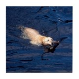 Dog Swimming Tile Coaster