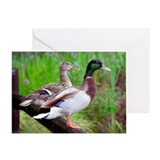 2 Mallards On a Fence Greeting Card