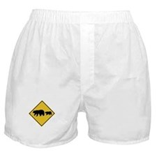 Beware of Bears, USA Boxer Shorts