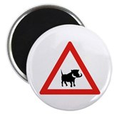 Beware of Warthogs, South Africa Magnet
