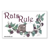 Rats Rule Berries Rectangle Decal