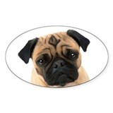 Pugs Oval Decal