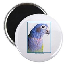 Blue-Headed Pionus - Magnet