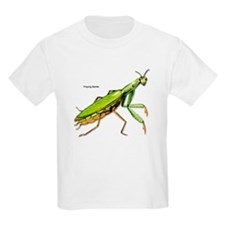 Praying Mantis Insect Kids T-Shirt