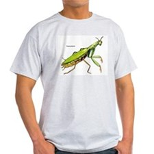 Praying Mantis Insect (Front) Ash Grey T-Shirt
