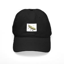 Grasshopper Insect Baseball Hat