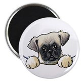 Pocket Pug Puppy 2.25&quot; Magnet (10 pack)