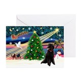 XmasStar/Poodle (ST-B) Greeting Cards (Pk of 20)