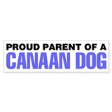 Proud Parent of a Canaan Dog Bumper Sticker