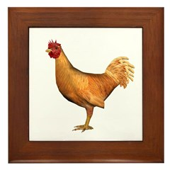Chicken (Gold) Framed Tile