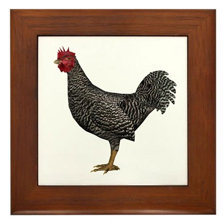 Chicken (Doming) Framed Tile