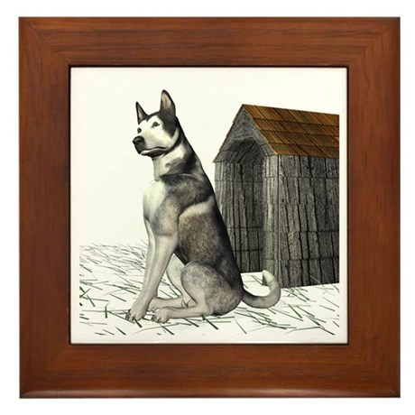 Dog (Malamute) Framed Tile