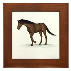Horse (Liver Chestnut) Framed Tile