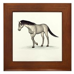 Horse (Grey) Framed Tile