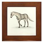 Horse (Fleabitten) Framed Tile