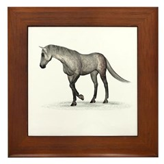 Horse (Dapple) Framed Tile