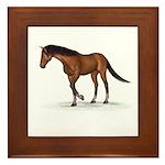 Horse (Bay) Framed Tile