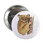 Tarsier Rain Forest Button