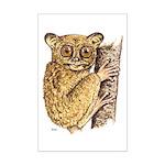 Tarsier Rain Forest Mini Poster Print