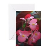 """Beautiful"" Blank Single Greeting Card"