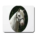 Spanish Jennet Stallion Mousepad
