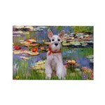Lilies / M Schnauzer Rectangle Magnet (10 pack)