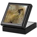 Elephant Eye Keepsake Box