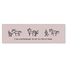 I am a Professional: Farrier / Bumper Car Sticker